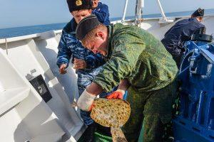 В Черноморском районе при помощи авиации задержали браконьеров