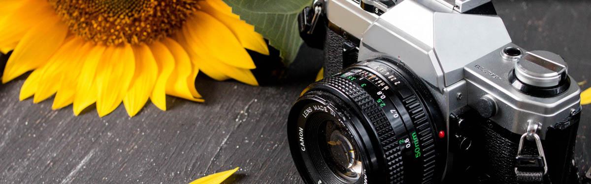 5 полезных советов начинающим фотографам