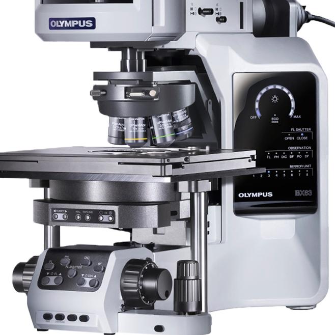 Что представляет собой цифровой бинокулярный микроскоп